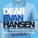 Waving Through A Window (From Dear Evan Hansen)